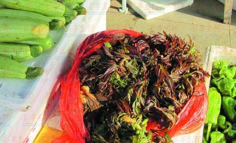 新鲜香椿已上市 一斤香椿能买两斤猪肉