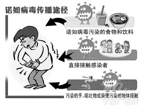 如何预防诺如病毒(陈) - gyx19940121 - 鹤幼长沼中五班的博客