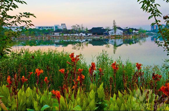 航拍宁波植物园开园前夕 云雾缭绕宛如仙境