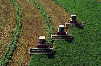 今年起在全省实施耕地保护补偿机制