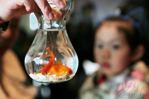 萌娃制作生态瓶 雨水节气学环保