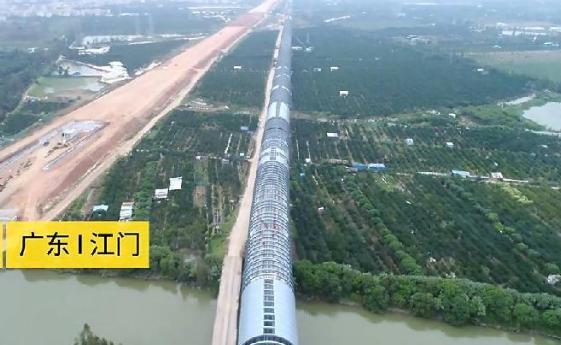 为了小鸟,这条高速铁路建全球首例环形屏障