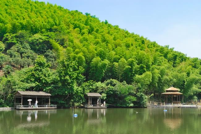 家门口的度假村——绿野山庄