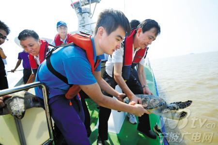 水生野生动物保护科普宣传月