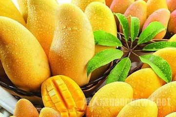 水果生活大妙用,你知多少?