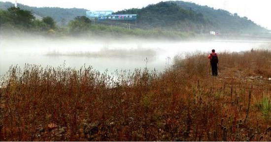 宁波人最爱去的森林公园有哪些?