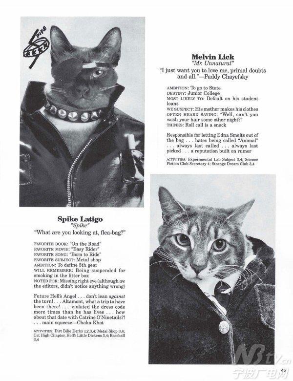 在没有ps的80年代 如何拍出猫头人身照