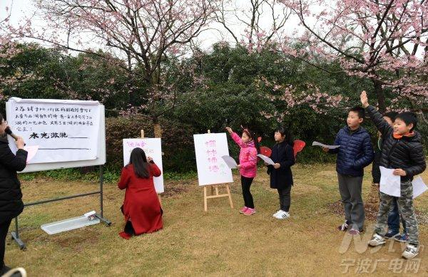樱花树下 邂逅一场春天的诗词大会