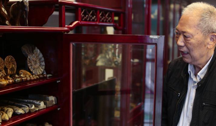 媲美博物馆!杭州大爷78年收集贝壳3000余种