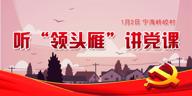 """滚动播报   听""""领头雁""""讲党课之走进宁海岭峧村"""