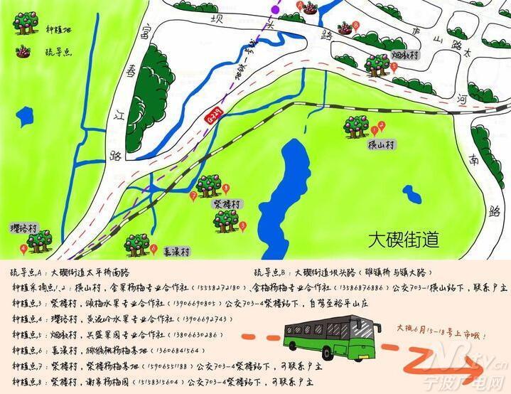 """太方便了!宁波首个手绘""""杨梅地图"""" 快收好"""